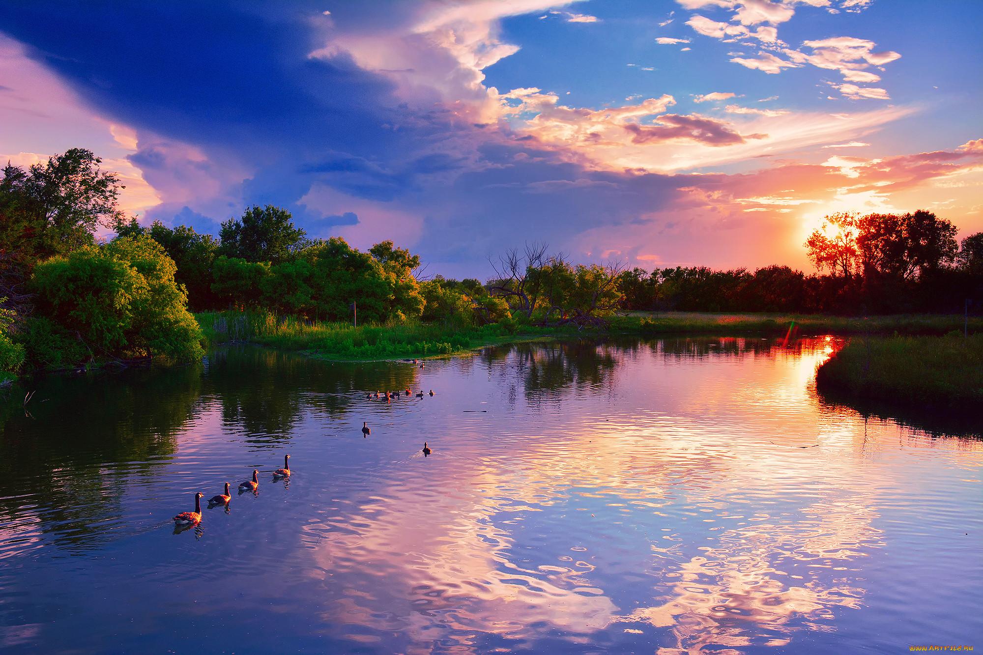 нашли красивые картинки лето солнце река зависимости